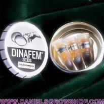 Edición Coleccionista 11 (BK,DL,DX) (Dinafem)