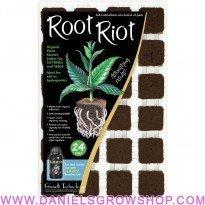Root Riot (bandeja de 24)