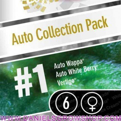 Auto Collection Pack 1 (Paradise Seeds)