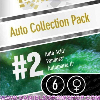 Auto Collection Pack 2 (Paradise Seeds)