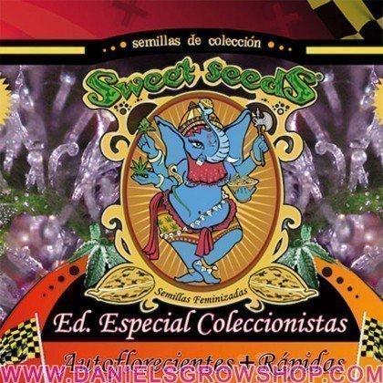 Edición Coleccionista Autoflorecientes + Rapidas (Sweet Seeds)