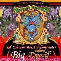 Edición Coleccionista Auto Big Devil (Sweet Seeds)