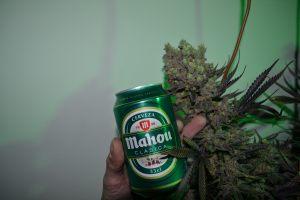 marihuana-0758
